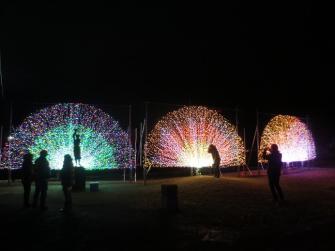 諏訪の光の祭典